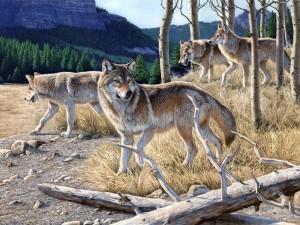 Pintura de unos lobos por Al Agnew