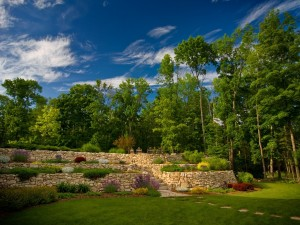 Un hermoso jardín verde