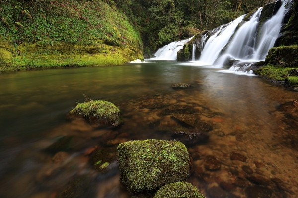 Cascadas de agua blanca (East Fork Coquille River, Oregon)