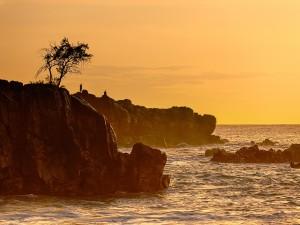 Postal: Waimea Bay, condado de Honolulu, Hawái