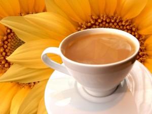 Café con leche y girasoles de fondo