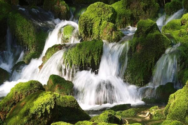 Pequeñas cascadas entre rocas musgosas