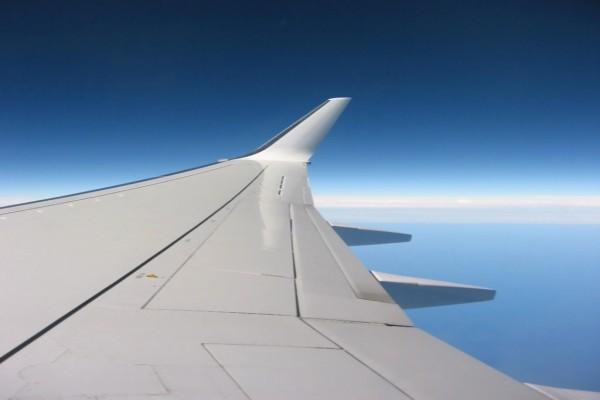 El ala del avión