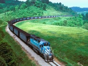 Tren de mercancías atravesando los verdes prados