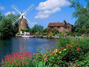 Postal: Un molino de viento en Holanda