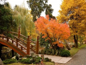 Un jardín japonés en Breslavia, Polonia