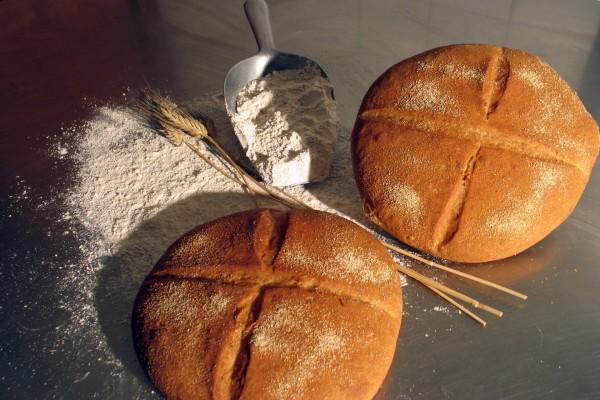 Panes de harina de trigo