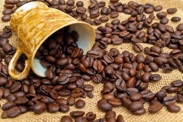 Una taza y granos de café