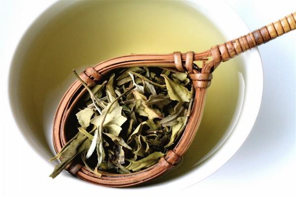 Infusionando unas hojas de té