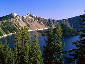 Postal: Isleta en un lago en Alaska