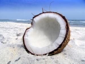 Coco partido en la arena de la playa