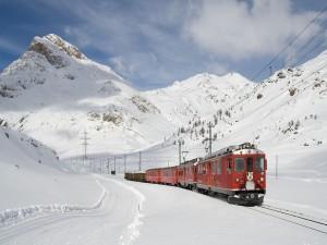 Postal: Tren en la línea de Bernina Express, Suiza