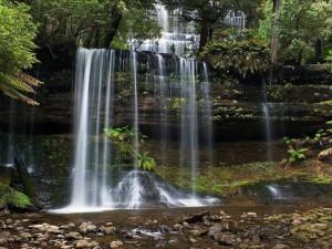 Cataratas Russell, Parque Nacional del monte Field (Tasmania, Australia)