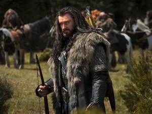 Thorin Escudo de Roble