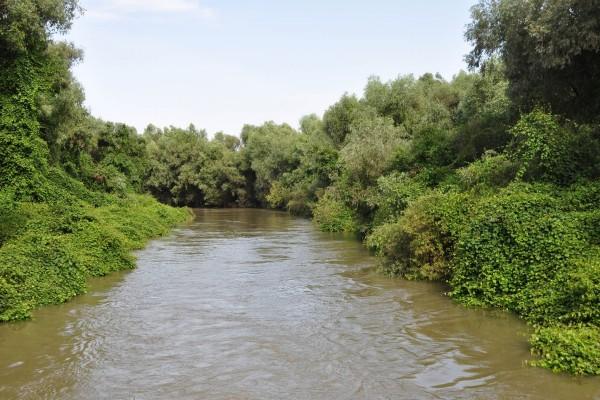 Delta del Danubio (Rumanía)