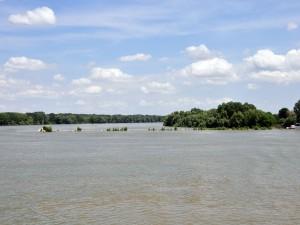 Postal: Delta del Danubio, Rumanía