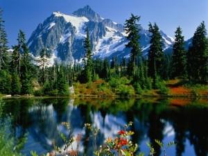 Postal: Lago cerca de las montañas