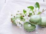Macaroons verdes