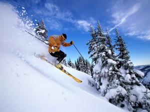 Bajando la montaña en esquís