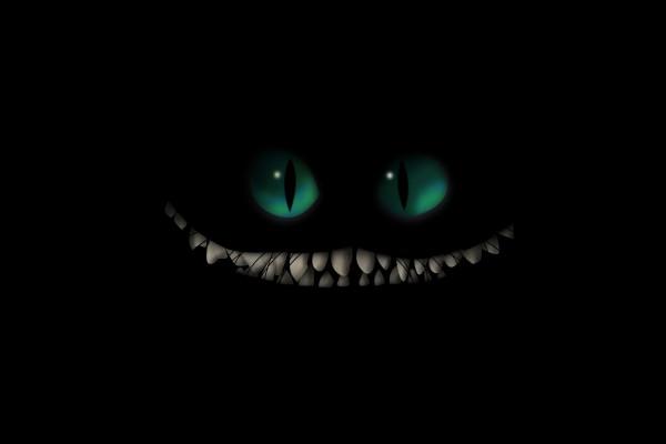 Un gato malvado en la oscuridad