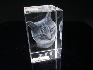 Grabado láser 3D de la cabeza de un gato