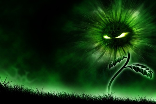 Girasol demoniaco