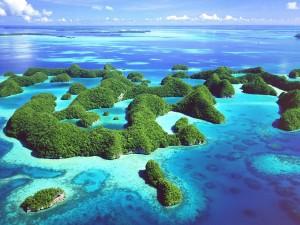 Islas cubiertas de vegetación en Palaos