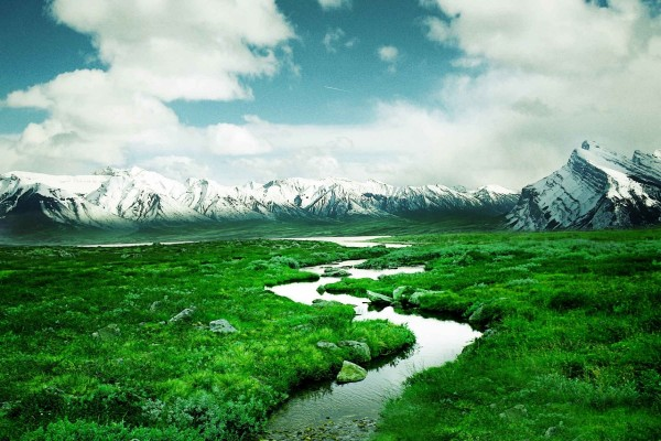 Paisaje de verdes prados y montañas nevadas