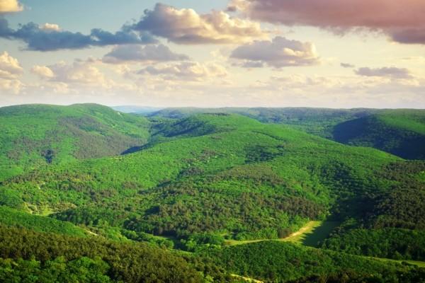 Colinas cubiertas por una densa vegetación