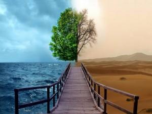 Mar y desierto