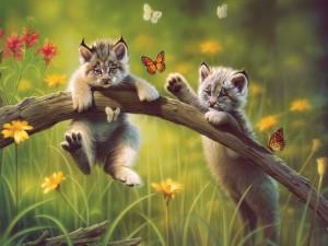 Postal: Gatos jugando con mariposas