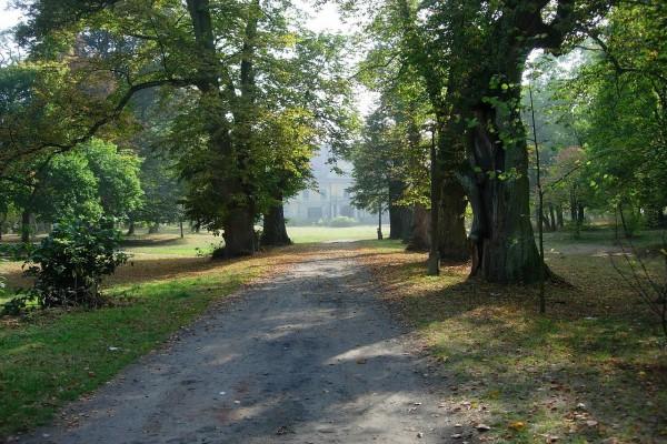 Parque en frente del palacio Drucki-Lubecki (Polonia)