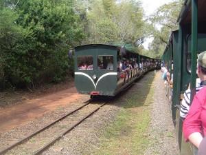 Tren ecológico de la selva, en el Parque nacional Iguazú (Argentina)