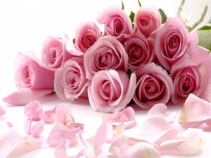 Postal: Pétalos y rosas