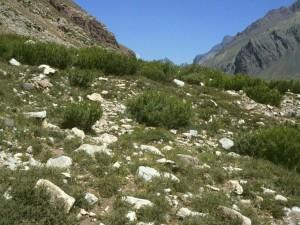 Paso de Uspallata (Mendoza, Argentina)