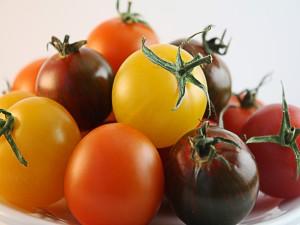 Postal: Tomates de colores