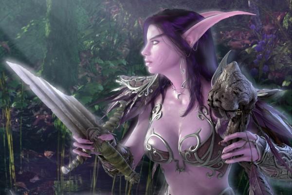 Guerrera elfa