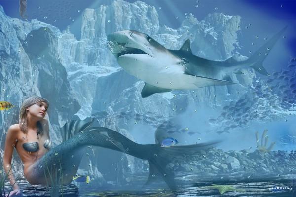 Sirena junto a un gran tiburón