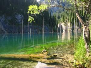 El Lago Kaindy en el sur-oeste de Kazakstán