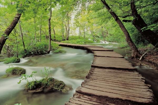 Pasarela cruzando el río