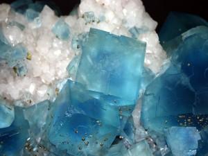 Postal: Cristales de fluorita (azul) con pirita (dorada)