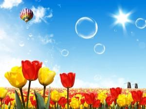 Postal: Viaje en globo por Holanda, tierra de tulipanes