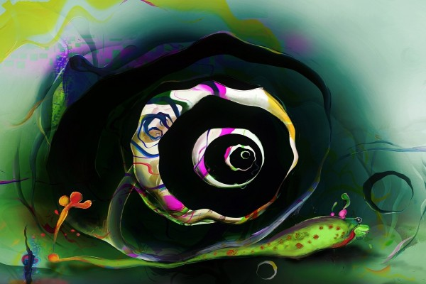 Caracol abstracto