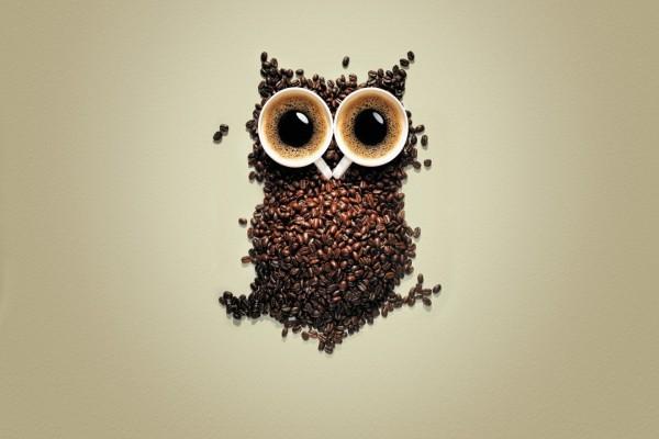 Un buho de café