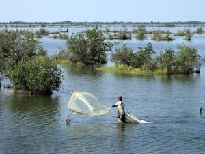 Pescadores de camarones en la costa del estado de Nayarit, México