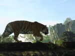 Tigre majestuoso