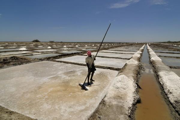Un obrero trabajando en las salinas de Marakkanam, Tamil Nadu, India