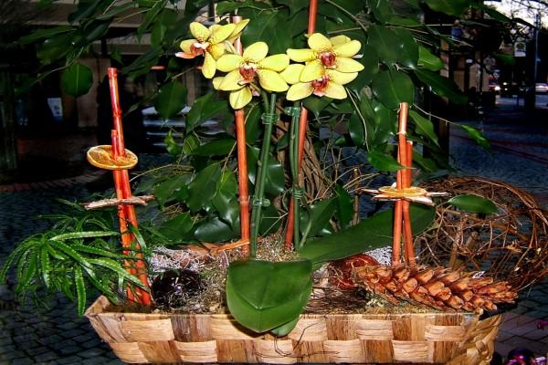 Arreglo floral con una planta de orquídea