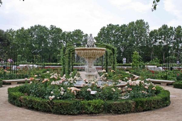 Rosaleda en el Parque del Retiro de Madrid (España)