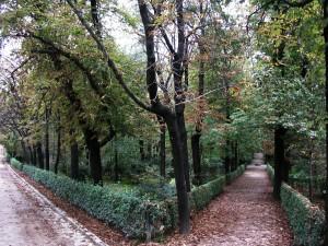 Postal: Jardines del Buen Retiro, Madrid